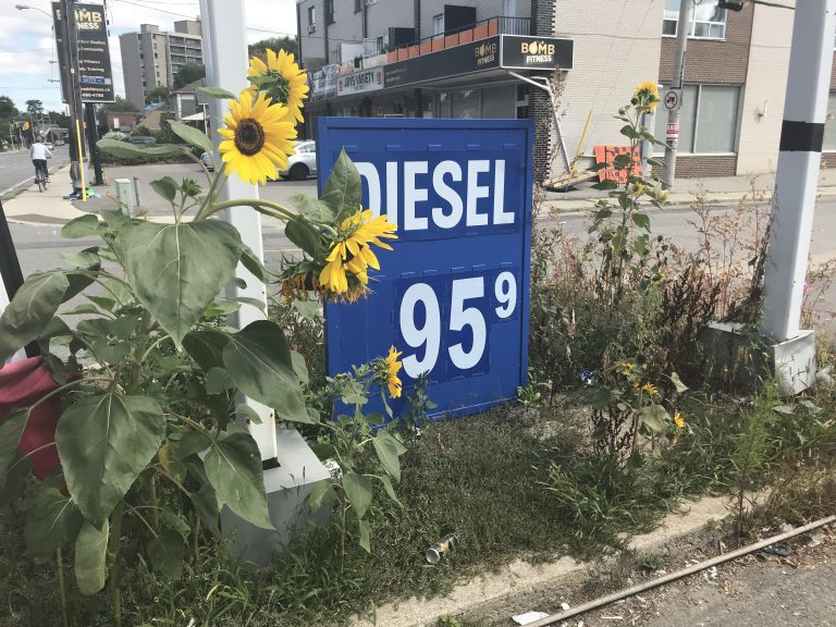 Sunflowers at Gas Station