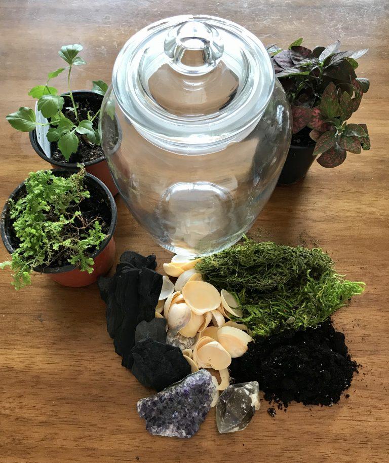Photo 2 - Terrarium Supplies