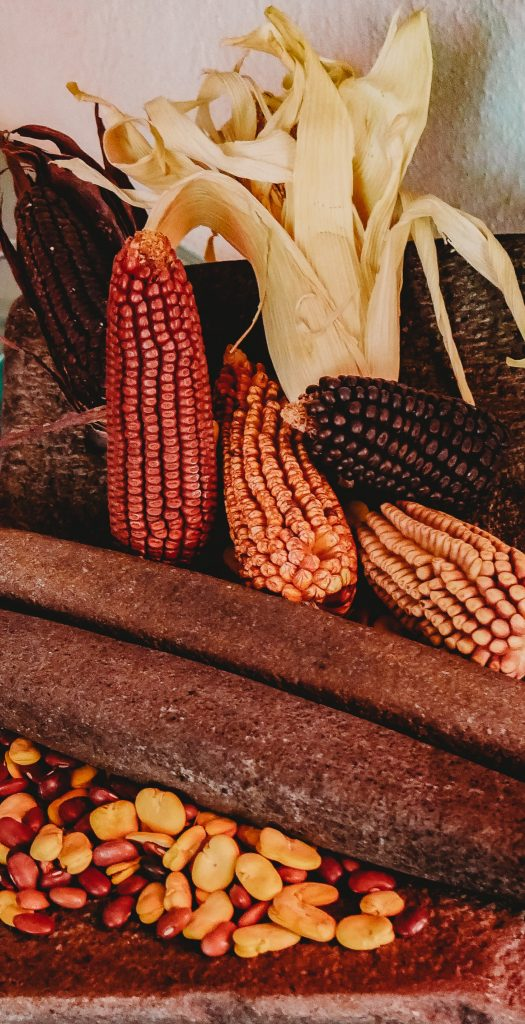 colored corn - photo by Roberto Carlos Roman via unsplash