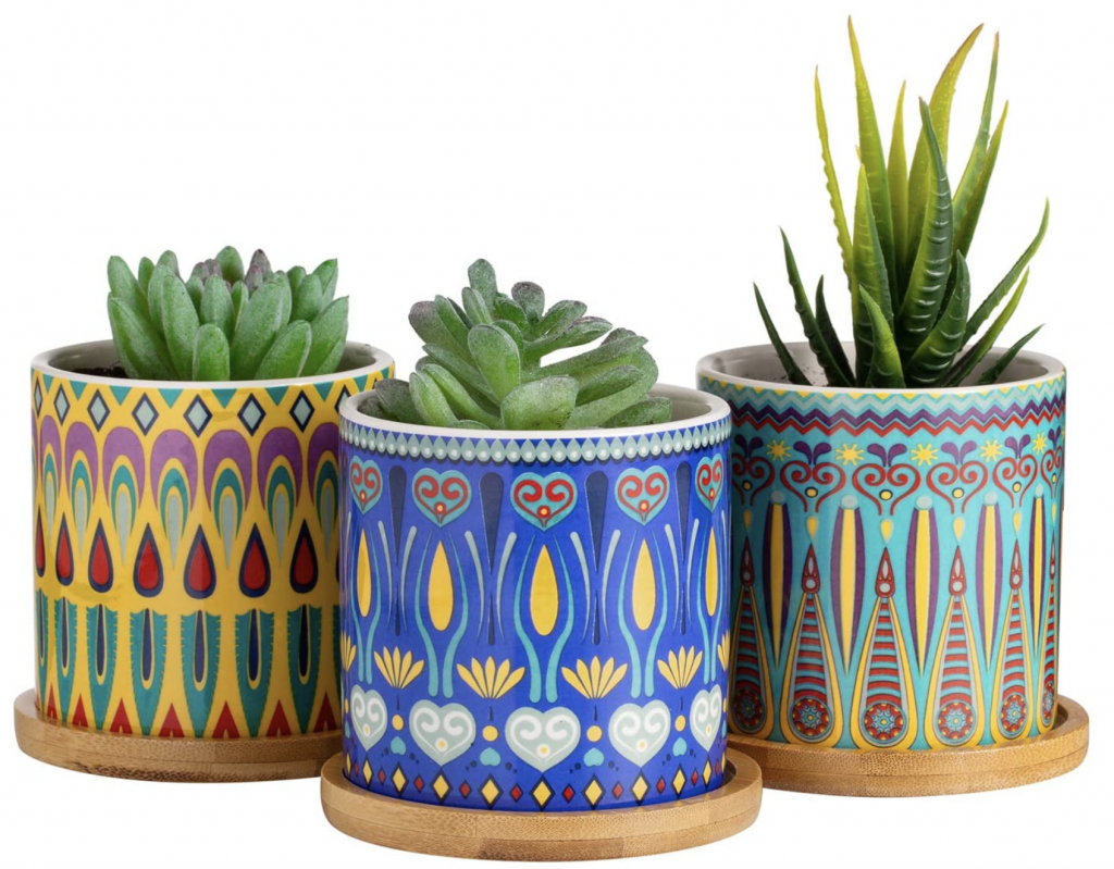 Colorful Succulent Pots with Drainage and Bamboo Tray