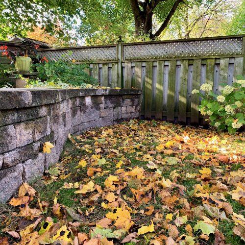 Garden Fallen Leaves