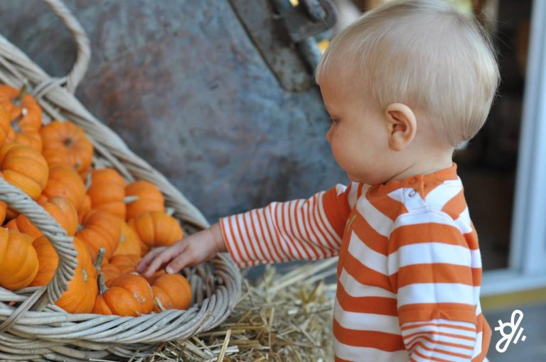 Henry in the pumpkin patch