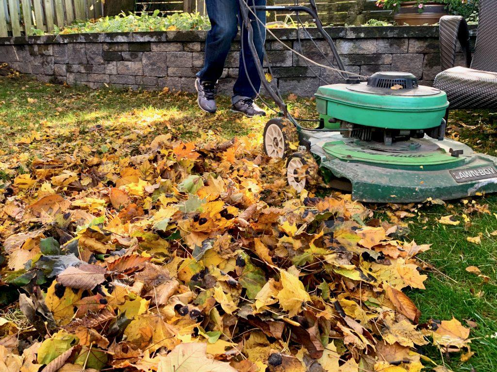 Mowing Leaves