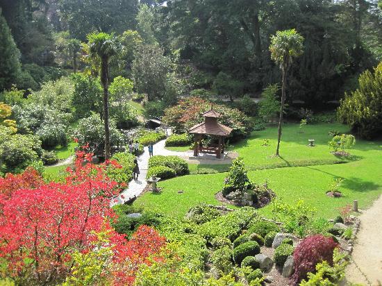 Powerscourt Garden landscape
