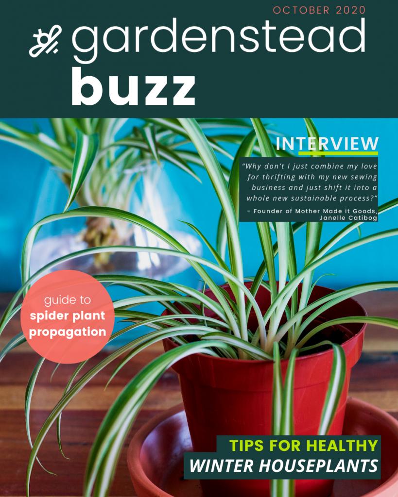 gardenstead buzz oct 2020