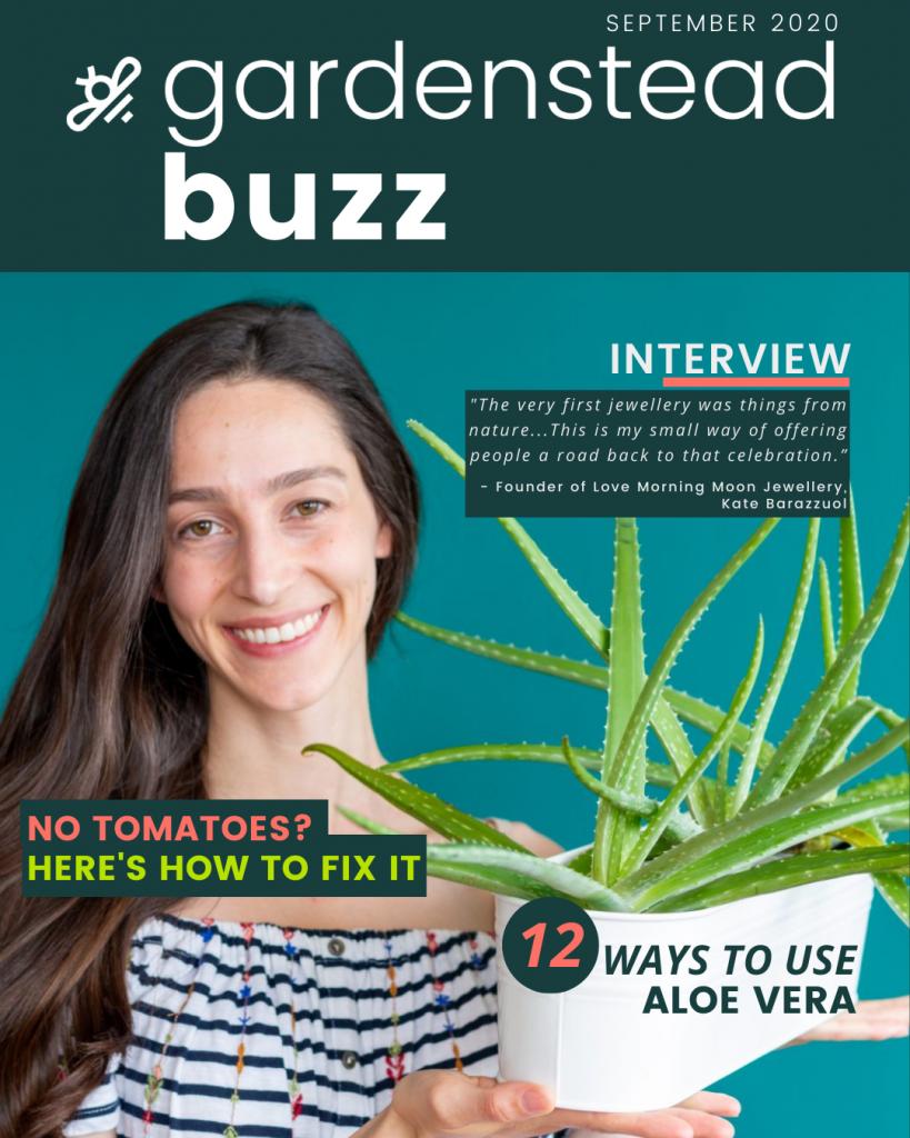 gardenstead buzz sept 2020