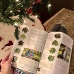 Browsing seed catalogs