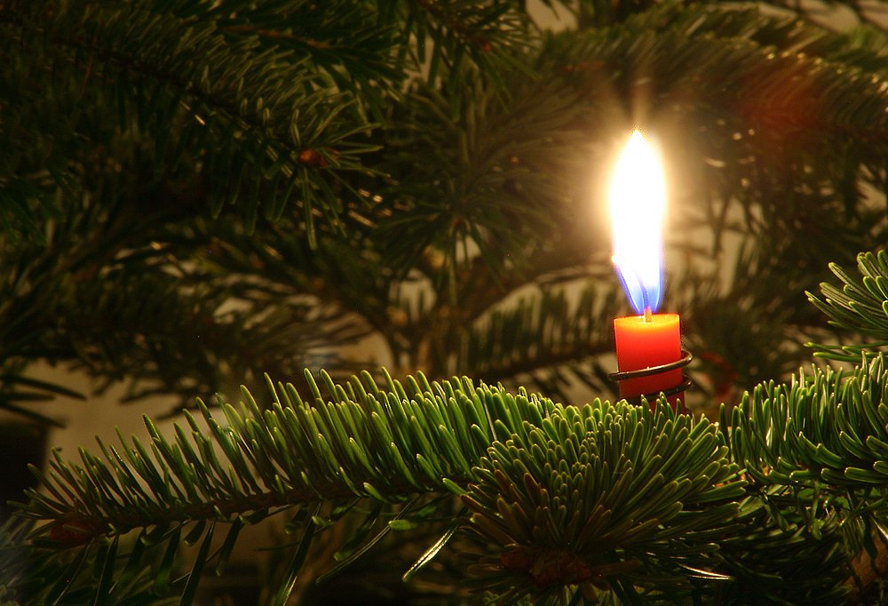 Candle and Christmas tree