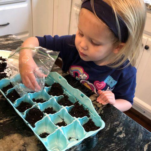 Children love to help start seeds