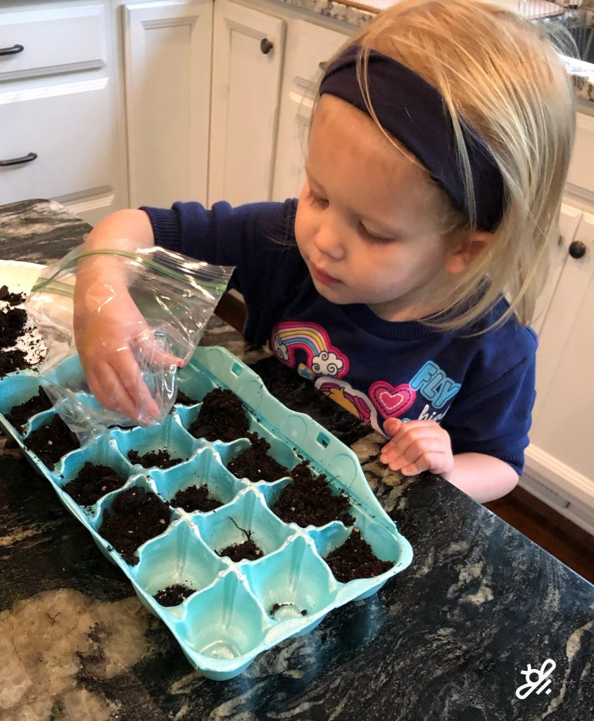 Children love to help start seeds