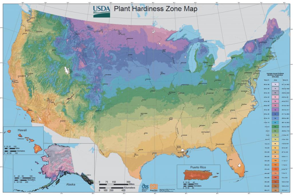 Garden hardiness zones