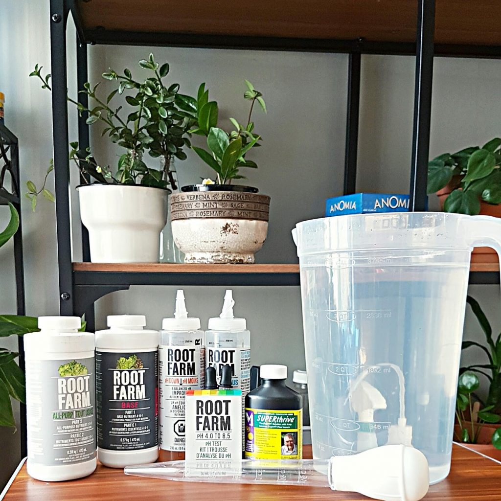 plants using leca starter kit
