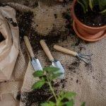 plant potting tools