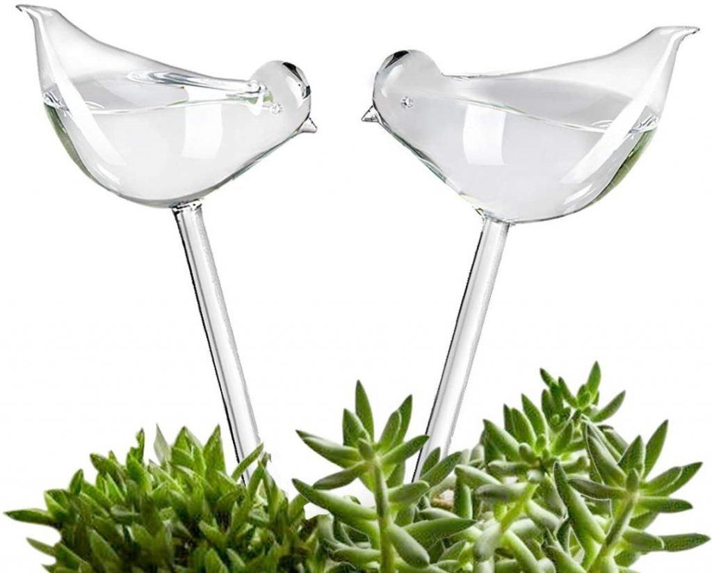 Plant Self Watering Bulbs