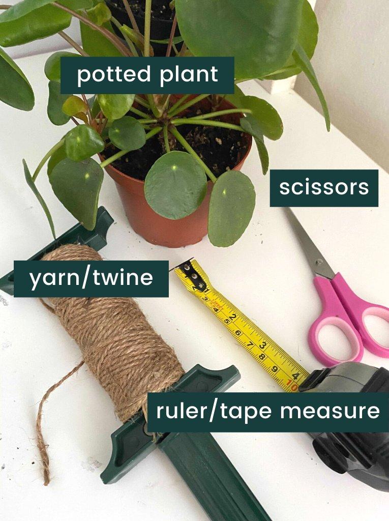 macrame plant hanger - materials