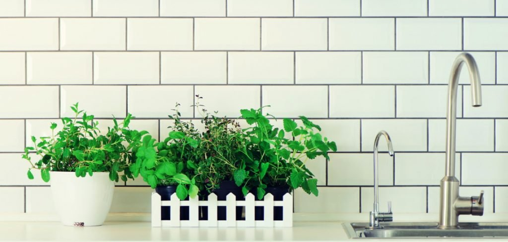 herb containers kitchen