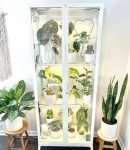 greenhouse cabinet by @rachplants